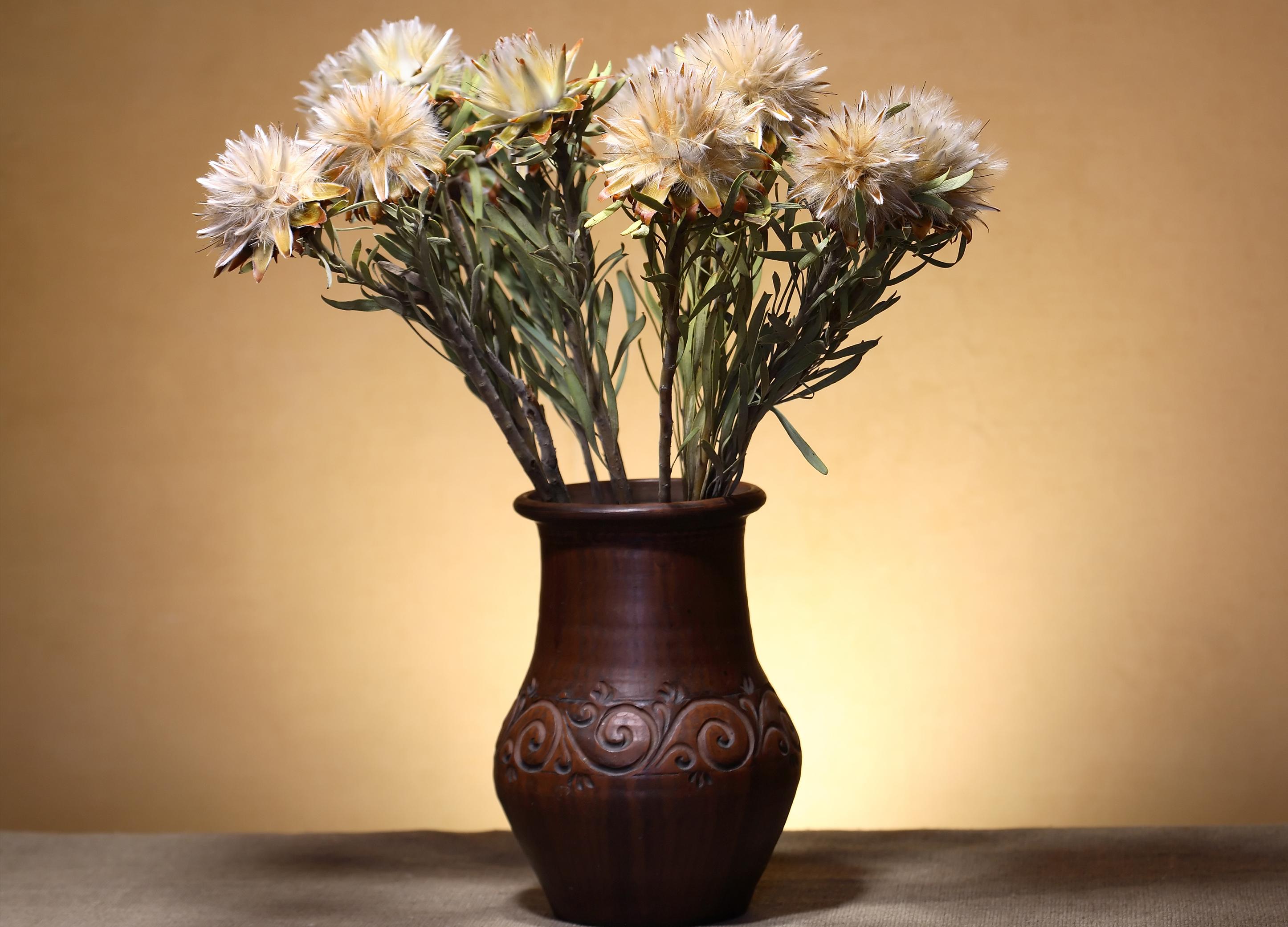 Le Trésor dans le vase